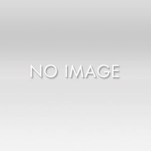 メトロポリタン美術館「京都―芸術的想像力の都」展の画像